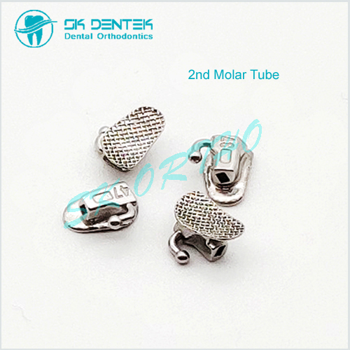 2nd Molar Tube Wide Entrance