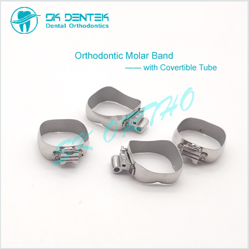 Orthodontic Molar Band with Double Tube