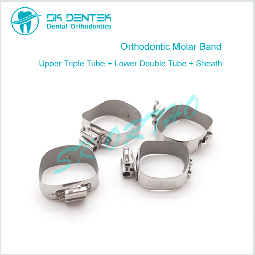Orthodontic Molar Band with Tube and Cleath
